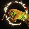 Цирки в Ангарске